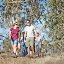 Walking the Winton Wetlands