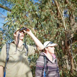 Walking Winton Wetlands