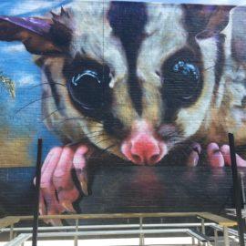 Dvate Benalla Street Art